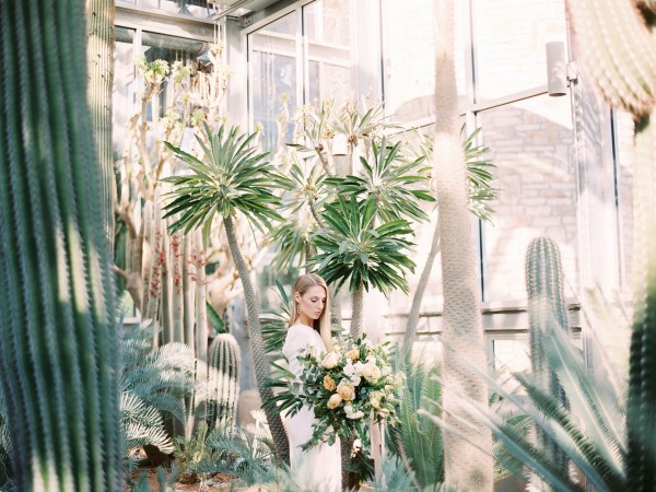 Austin-wedding-planner-fine-art-shoot-texas-cactus-greenhouse-wedding-desert-wedding-charla-storey-grit-and-gold26